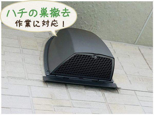 ハチの巣を撤去した換気扇