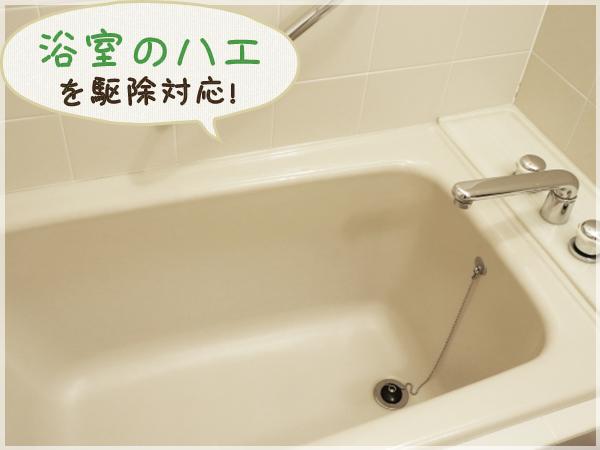 ハエを駆除した後の浴室