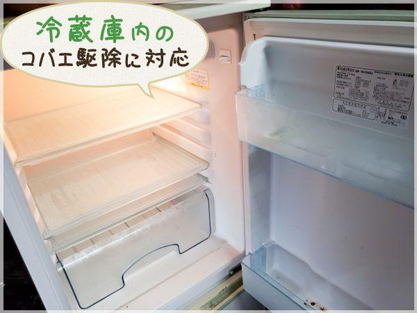 駆除・除菌後の冷蔵庫