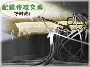 修理交換作業を行った天井内の電気配線